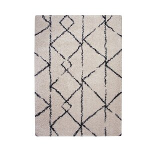 Buy luxury Tefft Shag/Flokati Synthetic Ivory/Blue Indoor Area Rug ByBrayden Studio