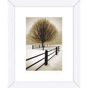 'Solitude' by David Lorenz Winston Framed Photographic Print by McGaw Graphics