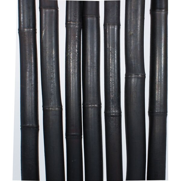 Eastfield 10 Piece Bamboo Pole Set by Bay Isle Home