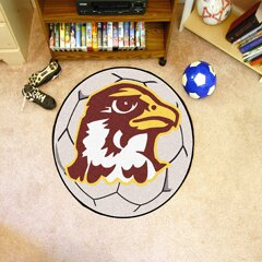 NCAA Quincy University Soccer Ball by FANMATS