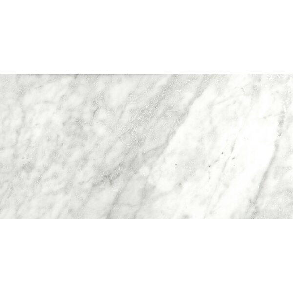 Marble 12 x 24 Field Tile in Bianco Gioia by Emser Tile