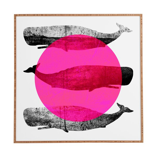 Whales Pink Framed Graphic Art by Wrought Studio