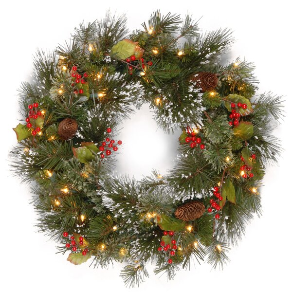 Pine Pre-Lit 24 Wreath with 50 Battery-Operated White LED Lights by Three Posts