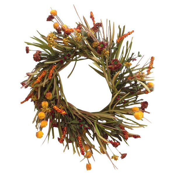 Field & Flower Wreath by Birch Lane™