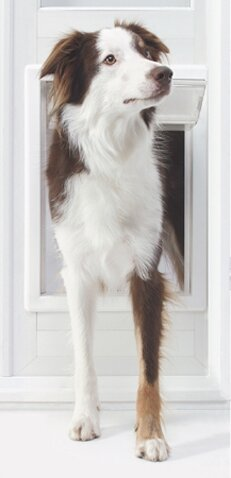 VIP Extra Large Pet Door by Ideal Pet Products