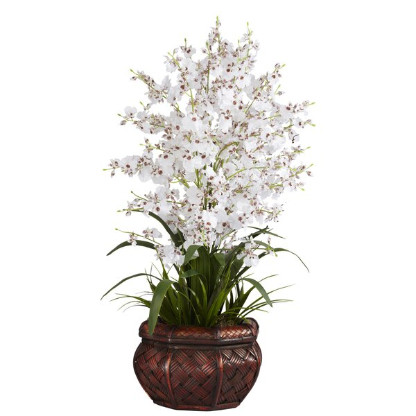 Dancing Lady Silk Flowers in White by Nearly Natural