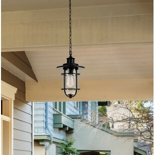 Affordable Norgren 1-Light Outdoor Hanging Lantern By Breakwater Bay