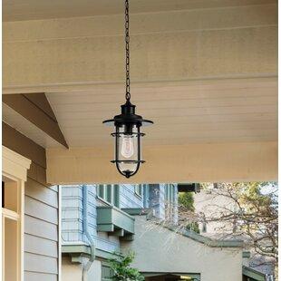Best Choices Norgren 1-Light Outdoor Hanging Lantern By Breakwater Bay