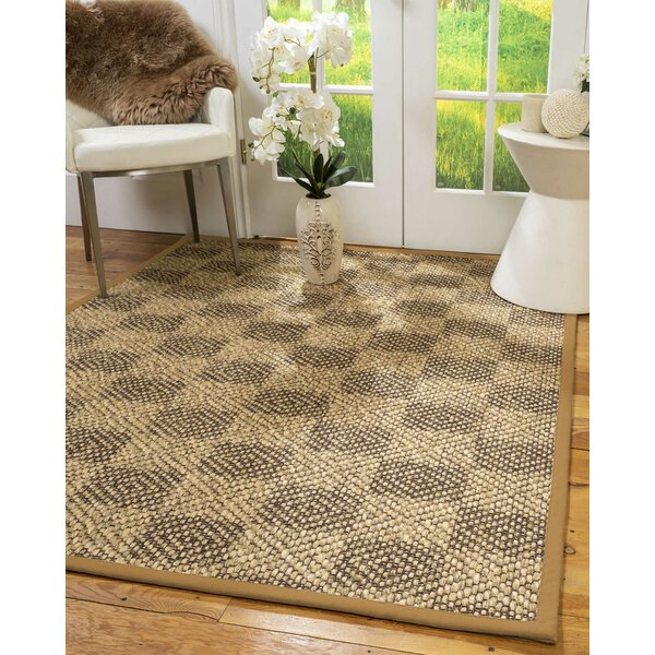 Orin Hand-Hooked Brown Area Rug