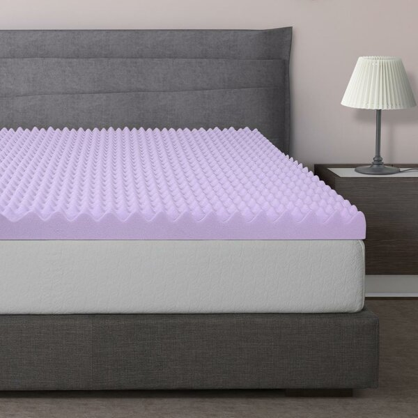 Egg Crate Foam Mattress Topper Wayfair