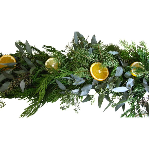 Fruit Garland by From the Garden