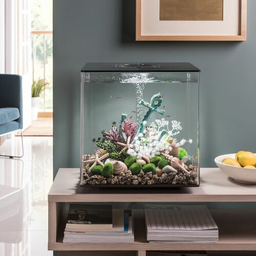 LED Aquarium Tank by biOrb