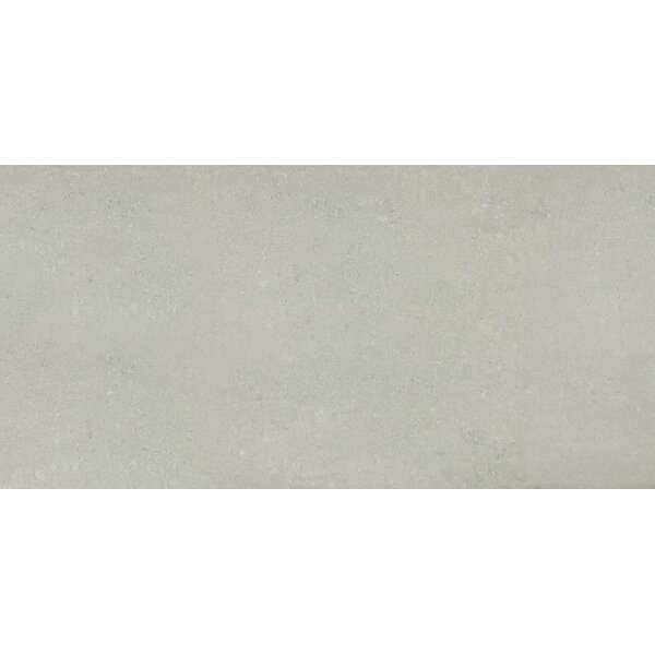 12 x 24 Porcelain Field Tile in Matte Ash by Parvatile
