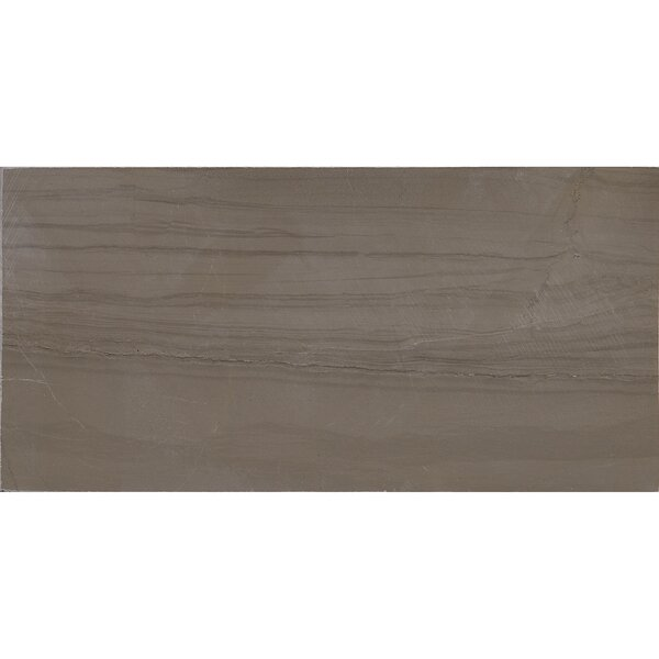 Harrison 3 x 6 Marble Wood Look Tile in Silver Screen by Itona Tile