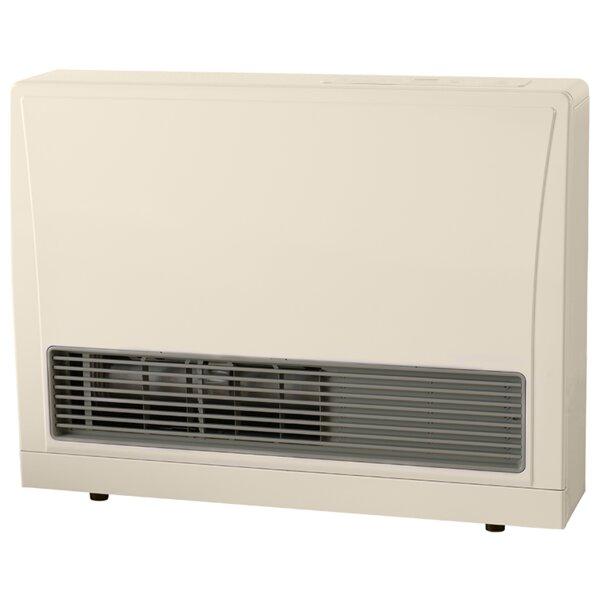 C Series Direct Vent 21,500 BTU Wall Insert Natural Gas Fan Heater by Rinnai