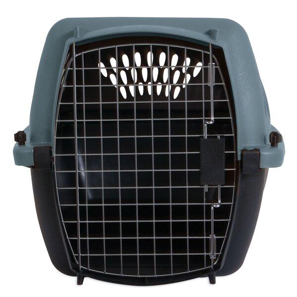 Metallic Fashion Pet Carrier by Petmate