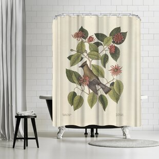 Check Prices Adams Ale The Chatterer Shower Curtain ByEast Urban Home