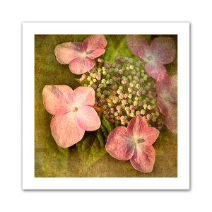 Pretty in Pink' by Antonio Raggio Photographic Print on Rolled Canvas by ArtWall