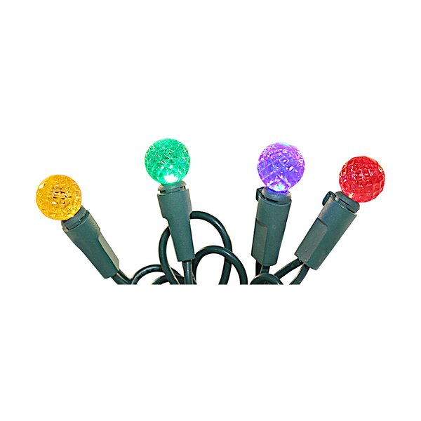 50 Light String Light (Set of 2) by The Holiday Aisle