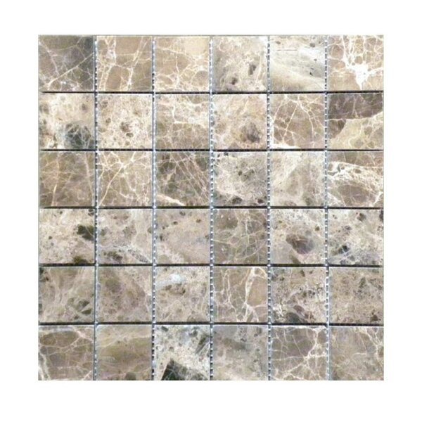 Polished 2 x 2 Natural Stone Mosaic Tile in Dark Emprador by QDI Surfaces