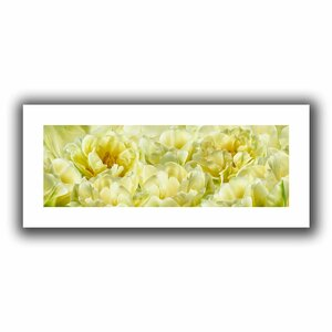 Yellow' by Cora Niele Painting Print on Rolled Canvas by ArtWall