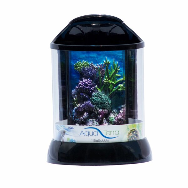 Aqua Terrarium by Bio Bubble Pets
