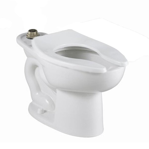 Madera Flowise Dual Flush Elongated Toilet Bowl by American Standard