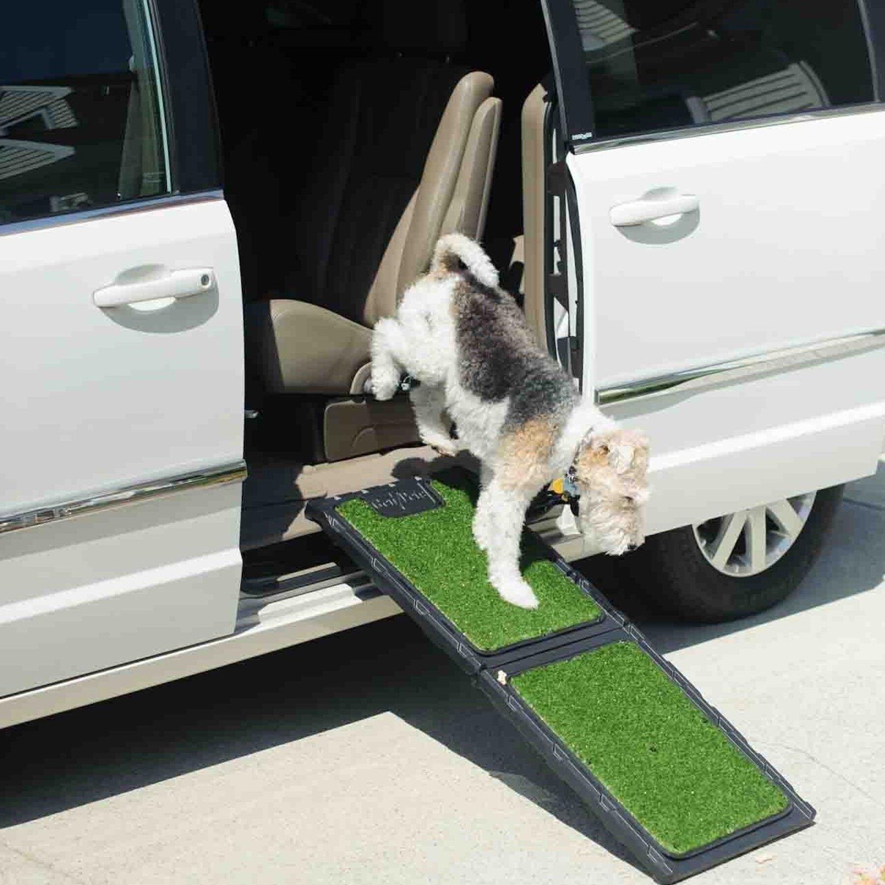 Tucker Murphy Pet Bowman Natural Step Mini 42 Pet Ramp Reviews Wayfair