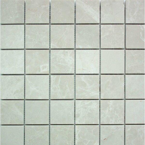 Polished 2 x 2 Mosaic Tile in Botticino by Ephesus Stones
