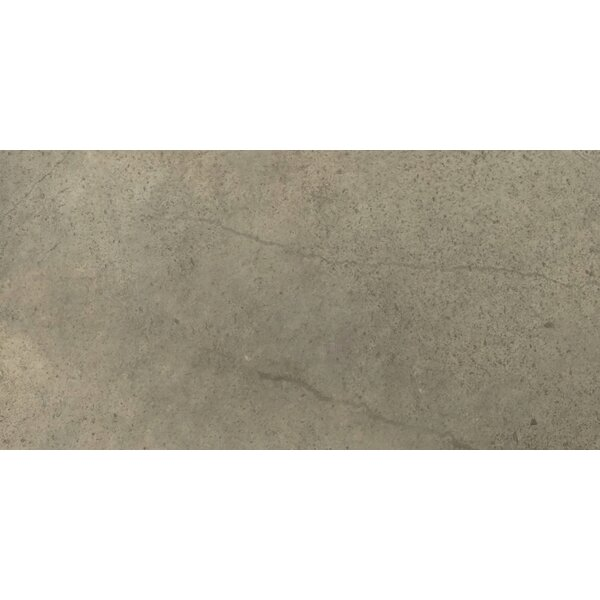 St Moritz II 12 x 24 Porcelain Field Tile in Olive by Emser Tile