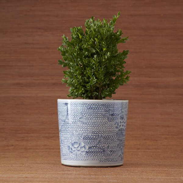 Hand-painted Porcelain Pot Planter by Two's Company