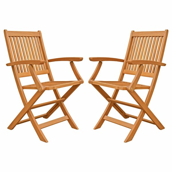 Cadsden Folding Patio Dining Chair (Set of 2) by Three Posts