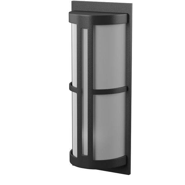 Douberly 2-Light Outdoor Sconce by Ivy Bronx