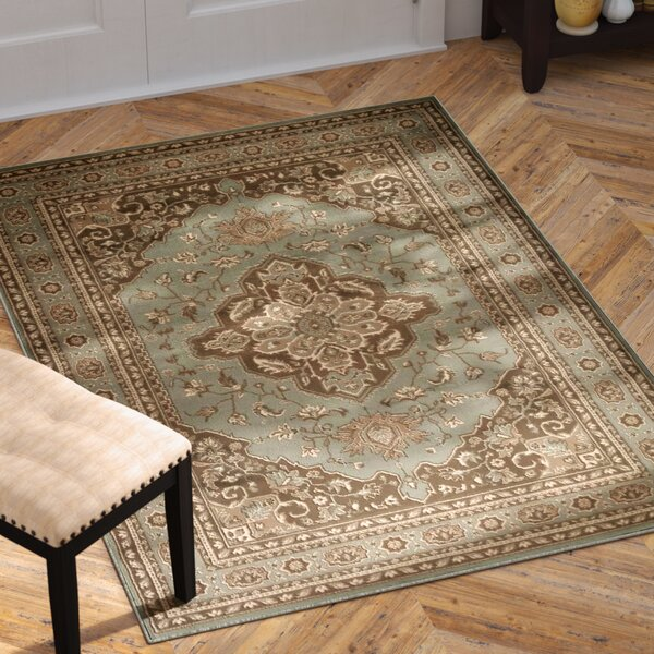 Boyer Green Area Rug by Astoria Grand