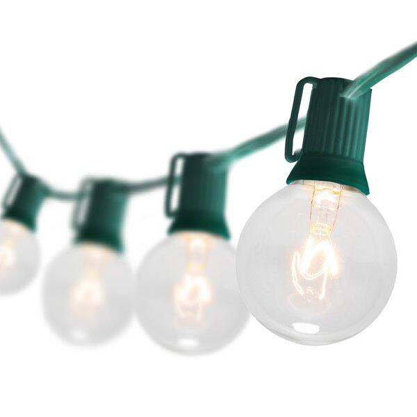 25-Light Globe String Lights by Wintergreen Lighting