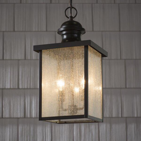 Curram Outdoor Hanging Lantern by Birch Lane™