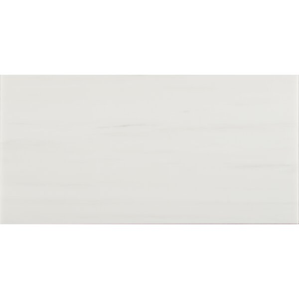 Bianco Dolomite 12 x 24 Marble Subway Tile in White by MSI