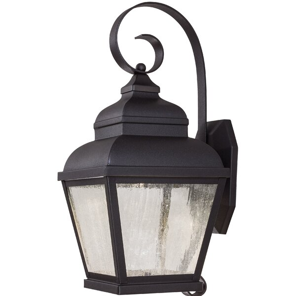 Amedori 2-Light Outdoor Wall Lantern by Darby Home Co