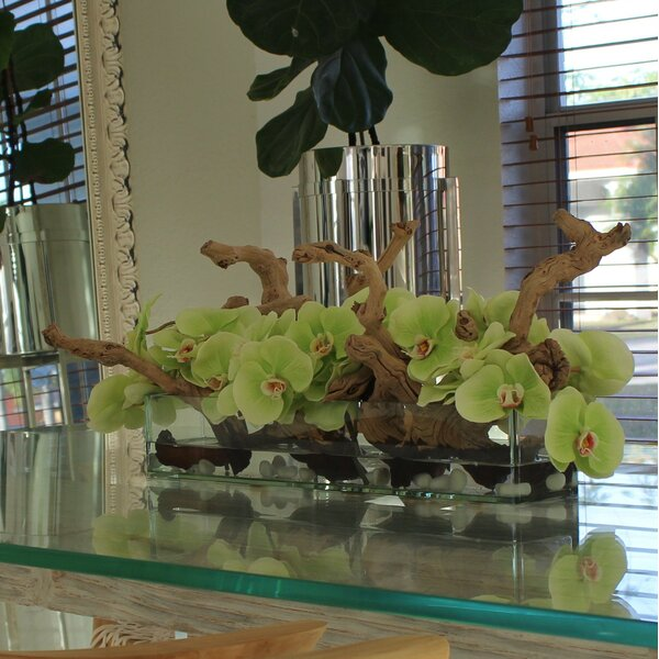 Driftwood Orchids Centerpiece in Glass Planter by Bayou Breeze