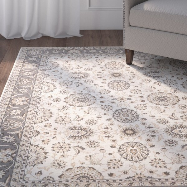 Apfel Ivory/Gray Area Rug by Charlton Home
