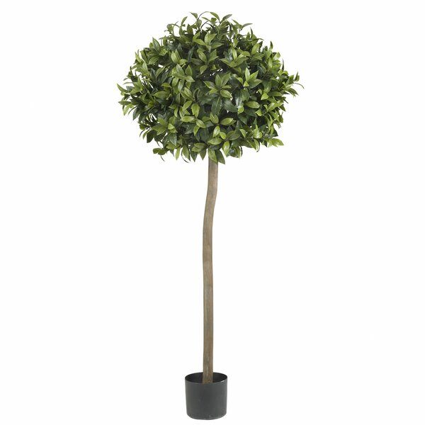 Sweet Bay Ball Round Topiary in Pot by Nearly Natural