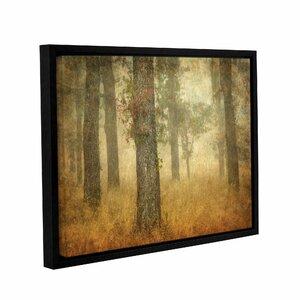 Oak Grove In Fog Framed Photographic Print by Loon Peak