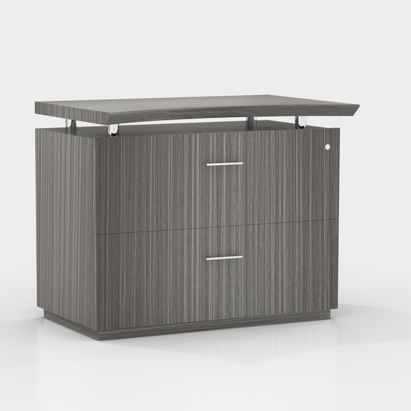 Austin Freestanding 2-Drawer Lateral Filing Cabinet