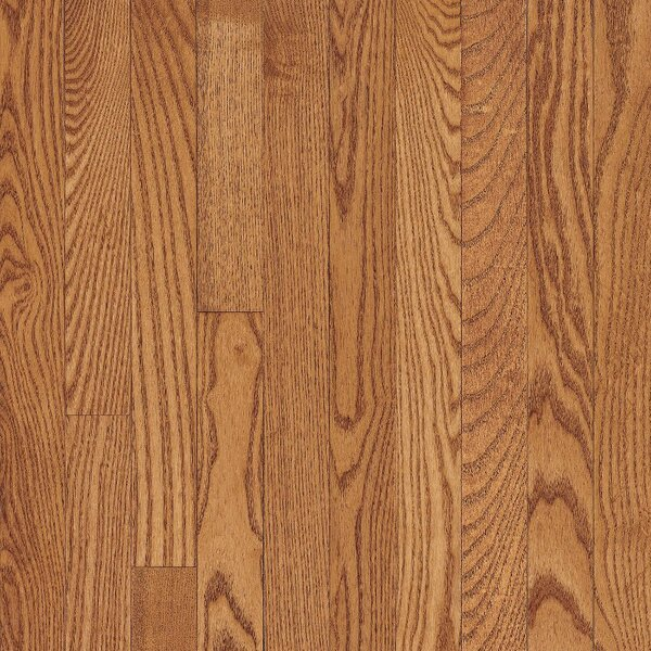 Dundee 2-1/4 Solid Red Oak Hardwood Flooring in Butterscotch by Bruce Flooring