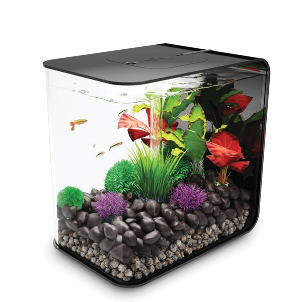 4 Gallon Flow Aquarium Tank by biOrb