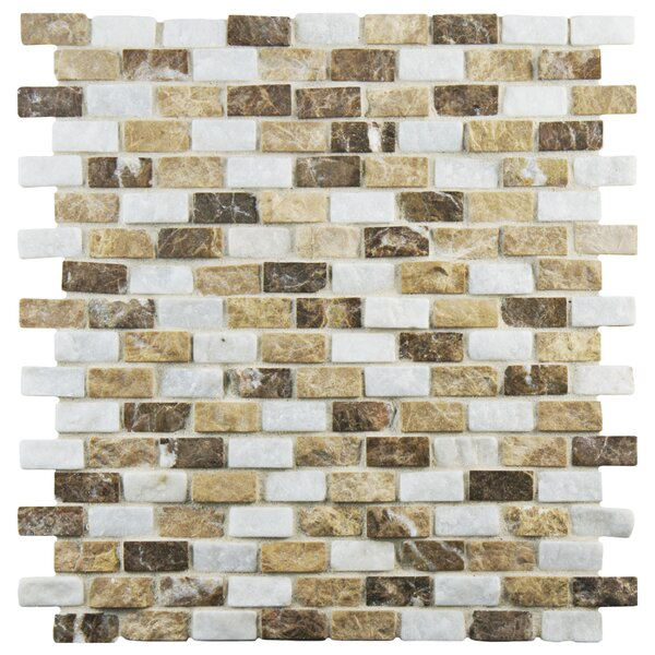 Grizelda 0.5 x 1.25 Natural Stone Mosaic Tile in Sand by EliteTile