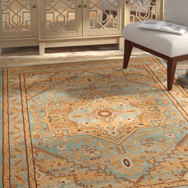 Marone Traditional Medallion Light Blue Area Rug by Bloomsbury Market
