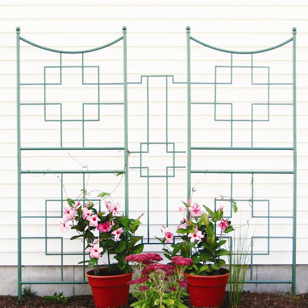 Square-on-Squares Iron Gothic Trellis Extender by ACHLA