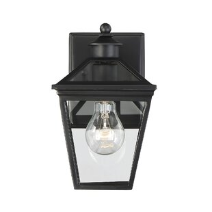 Read Reviews Coleg 1-Light Outdoor Wall Lantern By Darby Home Co