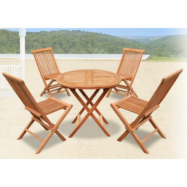Richland Golden Wood Folding Teak Patio Dining Chair Set by Winston Porter